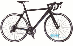 Carbon Fiber Forks Sora 18 Speed Racing Bicycle pictures & photos