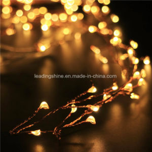 Warm White Mini Lamps LED Copper Wire 20 LEDs Battery Operated Firecracker String Fairy Lights pictures & photos