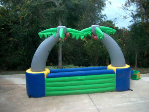 Big Advertising Inflatable Tropical Bar Tent pictures & photos