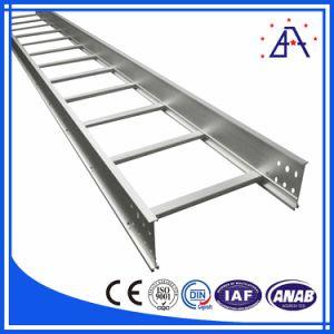 Customized Ladders Aluminium pictures & photos