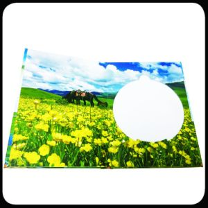 Full Colors Hardcover CD Box Custom CD Case Packing Box Printing pictures & photos