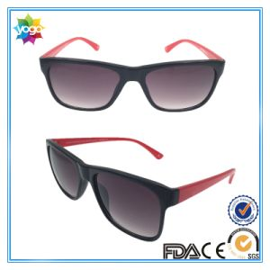 Fashion Design Sunglasses Cat Eye Shape Women Fashion Sunglass pictures & photos