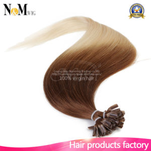 12-30 Inches 110g 100 Strands U Tip Nail Tip Hair Extensions Brazilian Remy Human Hair Keratin Fusion Hair Extensions of Hair pictures & photos