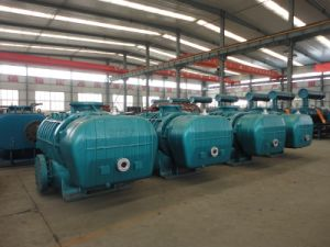 High Pressure Low Noise Roots Blower for Exhausting Gas Treatment