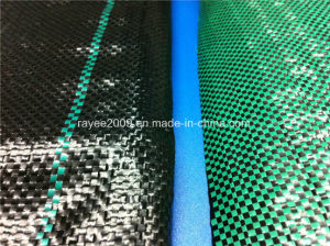 Free Air UV Resistant Agricultural Shade Net Greenhouse Shade Sail pictures & photos