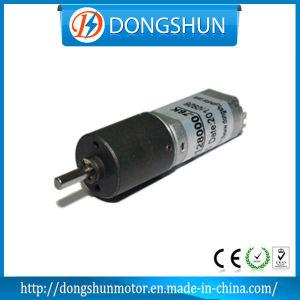 Ds-16RP050 3V 6V 12V DC Micro Gear Motor
