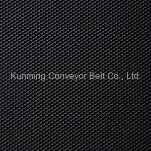 Conveyor Belt for Treadmill Plastic Patterned Stone Processing pictures & photos