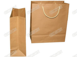 Kraft Paper Shopping Bag/ Carrier Bag/ Gift Bag pictures & photos