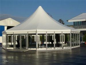 PVC Coated Awning Tarpaulin Tent (1000dx1000d 23X23 700g) pictures & photos