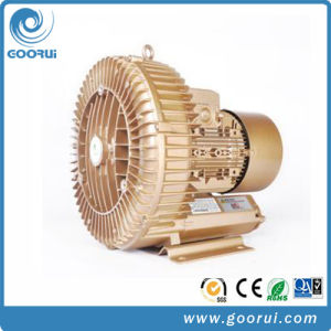 4.3kw Single Stage High Capacity Turbine Blower pictures & photos
