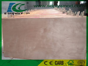 Commerical Plywood Export for Middle East pictures & photos
