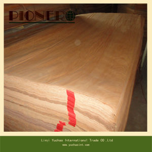 4*8′ Size Veneer Plb Poplar pictures & photos
