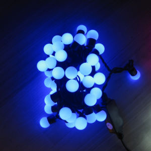 Outdoor LED Garden Light LED Decorative Light pictures & photos