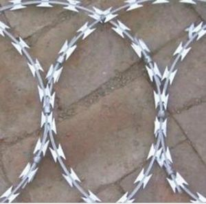 Factory Price Galvanized Concertina Razor Wire  pictures & photos