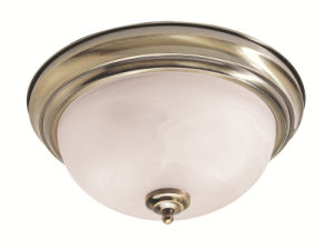 Moderm Simplism Style Ceiling Light (7117-01)