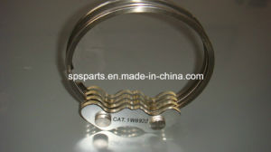 Ring Group for Caterpillar pictures & photos