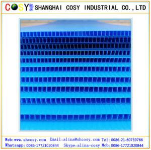 PP Corrugated Sheet PP Hollow Sheet Polypropylene Sheet pictures & photos