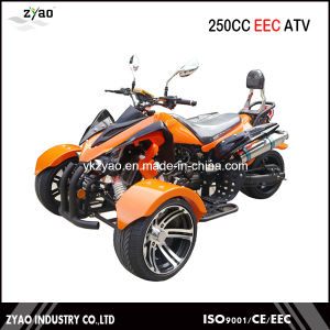 200cc EEC Trike ATV Kawasaki Quad Hot Sale in Germany 250cc Trike ATV with EEC Approved pictures & photos