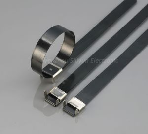PVC Coated Stainless Steel Straps -L Type 12X300mm pictures & photos