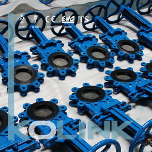 Bi-Directional Knife Gate Valve Replaceable Rubber Seat