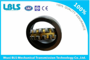 Rolling Bearing Bs2-2210-2CS pictures & photos