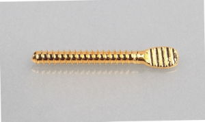 Dental Screw Post (S. S. with Gold Planted) for Back Teeth pictures & photos