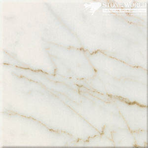 Polished Bianco Carrara Venato Marble Slabs for Flooring & Wall (MT086) pictures & photos