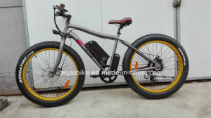 2015 New 48V500W Fat Tire Snow Mountain Samsung Kaiyi Electric Bicycle