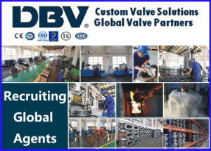 Wedge Gate Valve pictures & photos