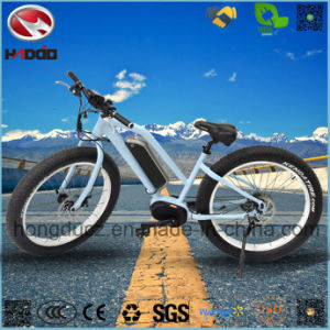 Fat Tire MID Motor Electric Beach Bicycle LCD Display for Adult pictures & photos