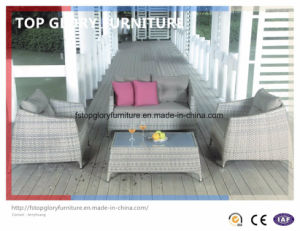 PE Rattan & Aluminum Furniture, Outdoor Rattan Sofa (TG-075) pictures & photos