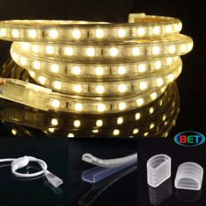 Flexible SMD LED Strip Light LED Garden Light Outdoor LED Light pictures & photos