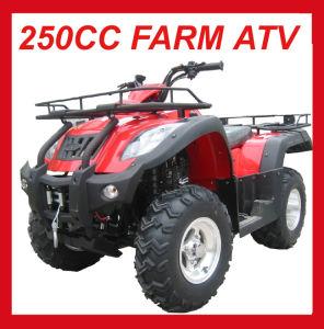 EEC 250cc Manual Transmission ATV Mc-373 pictures & photos