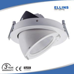 Adjustable Gimbal CREE 30W Dimmable COB LED Down Light Downlight Lifud Driver pictures & photos
