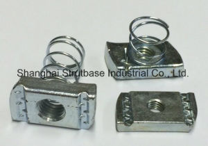 Spring Chanel Nuts Zp/HDG/Ss Steel pictures & photos
