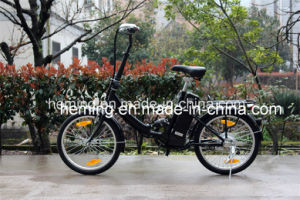 Latest Original Works Electric Bike pictures & photos