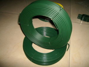 PVC/PE Coated Iron Wire (painted wire) pictures & photos
