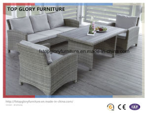 UV Resistance Rattan Outdoor Furniture Garden Sofa Set (TG-073) pictures & photos