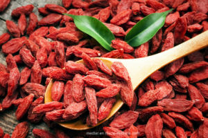 Fresh Organic Dried Wolfberry--Goji Bessen