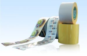 Unprinted Self-Adhesive Pet Film (RoHS & Reach) pictures & photos
