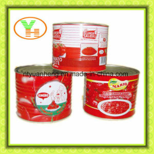 Canned Food Supplier Tomato Puree Concentrate pictures & photos