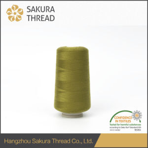 60/2 Oeko-Tex100 1 Class Polyester Sewing Thread for Zapatos pictures & photos
