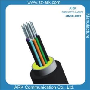 12f Optical Fibre Waterproof Pigtail Cable I Ark pictures & photos