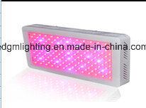 55LEDs Red+55 LEDs Blue+55LEDs Orange+55 LEDs White Full Spectrum86W 88W 90W 95W Square Grow Lights pictures & photos