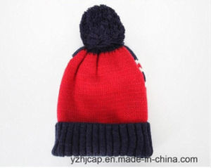 Winter Hat Acrylic Custom Knitted Hat POM POM Beanie Hat Jacquard Beanie Hat pictures & photos