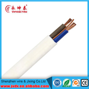 BVVB Copper Conductor PVC Insulated Flat Wire pictures & photos