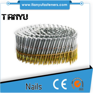 Umbrella Head Clout Coil Roofing Nails pictures & photos