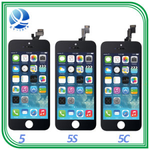 Mobile Phone LCD Screen for iPhone 5s/6 Plus/6s Plus/7 pictures & photos