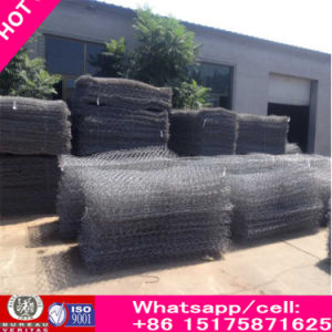 Galvanized and PVC Coated Gabions, Gabion Box, Gabion Mesh, Mattress pictures & photos