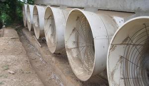 Ventilation fan for pig/ exactor fan for pig/ Pig ventilation system pictures & photos